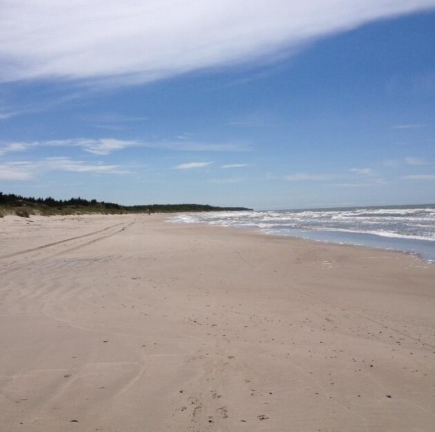 The Lithuanian beaches attract many summer tourists.