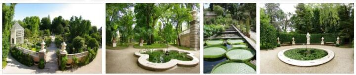 Botanical Garden in Padua